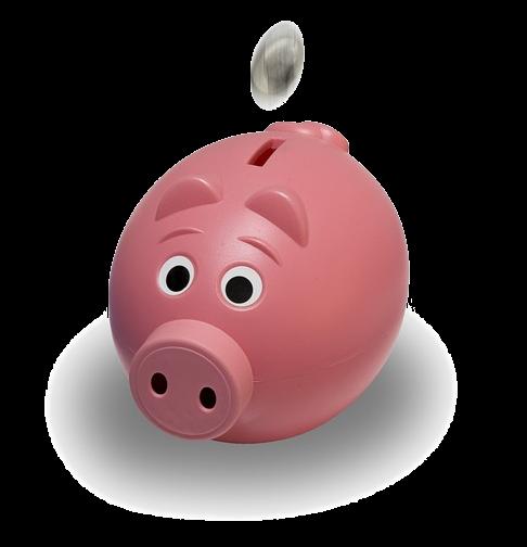 Mein Sponsor24 Sparschwein